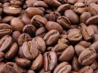 Der Wassergehalt von Kaffee muss bei Herstellung, Transport und Lagerung definiert und überwacht werden
